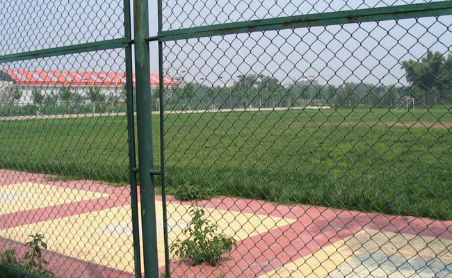 Hot Sale Chain Link Fence Made In China/ Chain Link Fence